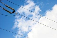 Isolanti della trasmissione di energia elettrica ad alta tensione Fotografia Stock