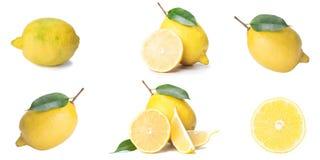 Isolat d'agrume, citron frais, totalité et tranches, sur un fond blanc, disposé dans les rangées photo libre de droits