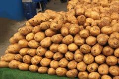 Isolat de fond de pomme de terre Photographie stock libre de droits