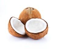Isolat de noix de coco sur le blanc photo stock