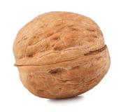Isolat de noix sur un fond blanc Photo libre de droits