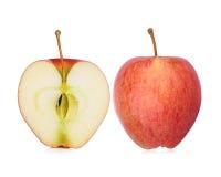 Isolat de pomme de gala sur le blanc photographie stock