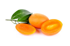 Isolat marial de fruit de prune sur le fond blanc (Mayongchid Maprang Photo stock