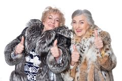Isolat mit zwei älteres Frauen auf Weiß Lizenzfreies Stockbild