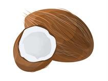 Isolatd opened coconut. Stock Photos