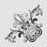 Isolate corner ornament. Isolate vintage baroque ornament retro pattern antique style acanthus. Decorative design element filigree calligraphy vector. You can stock photos