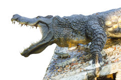 Isolate crocodile agape. Isolated close-side statue crocodile which was agape with awe on the stone Royalty Free Stock Image