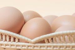 Chicken eggs in basket stock photo