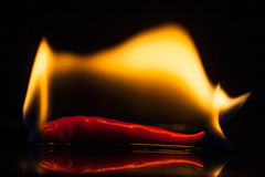 Isolate fire on red chilli on black ground Royalty Free Stock Photos