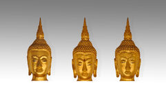 Isolate heads of buddha Royalty Free Stock Photography