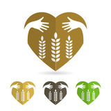 Isolate icon of Wheat ears Stock Photos