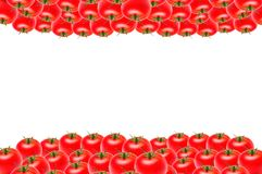 Isolate lots of tomatoes on the top and bottom on white background, copy space royalty free stock photos