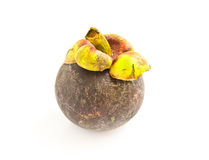 Isolate mangosteen on white background Royalty Free Stock Photo