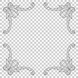 Isolate ornament in baroque style. Isolate vintage baroque ornament retro pattern antique style acanthus. Decorative design element filigree calligraphy vector Royalty Free Stock Photo
