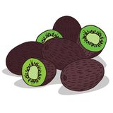 Isolate ripe kiwi fruit. On white background. Close up clipart with shadow in flat realistic cartoon style. Hand drawn icon Royalty Free Stock Photo