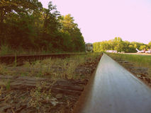 Isolate Train Tracks in Woods. Set of isolated train tracks in the woods royalty free stock photos
