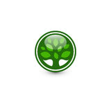 Isolated abstract green color round shape tree logo. Leaf logotype. Natural cosmetics icon. Eco system element. Organic Royalty Free Stock Photo