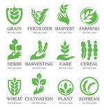 Isolated abstract green color wheat ear logo collection. Nature element logotype set. Leaf in human hand icon. Agricultural organic products signs. Harvesting Stock Image