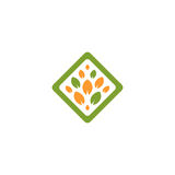 Isolated abstract green and orange color rhombus shape tree logo. Leaf logotype. Natural cosmetics icon. Eco system Royalty Free Stock Image