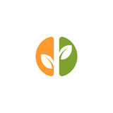 Isolated abstract green and orange color round shape logo. Leaf logotype. Natural cosmetics icon. Eco system element Stock Image