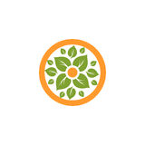 Isolated abstract round shape natural logo. Green leaves in orange circle logotype. Flower icon. Eco products sign Stock Photos
