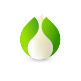 Isolated abstract white drop of milk in green fresh leaf logo. Dairy products logotype. Sour cream or kefir icon Royalty Free Stock Photography