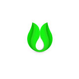 Isolated abstract white drop of milk in green fresh leaf logo. Dairy products logotype. Sour cream or kefir icon Royalty Free Stock Image