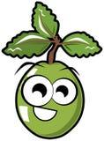 Isolated aguva fruit cartoon Stock Image