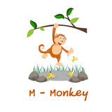 Isolated animal alphabet for the kids,M for Monkey Royalty Free Stock Photography