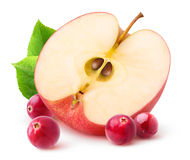 Isolated apple and cranberries. Half of red apple fruit and fresh cranberries isolated on white background with clipping path stock images