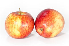 Isolated apples. Two apples isolated on a white background royalty free stock image