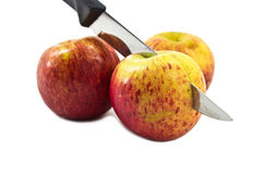 Isolated Apples. Photo of Stabbed Apples on White Background Stock Images