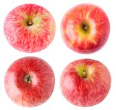 Isolated apples collection Royalty Free Stock Photo
