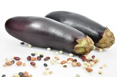 Isolated aubergine Stock Images