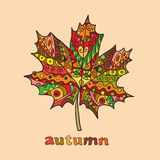Isolated autumn bright vector maple leaf Stock Photos