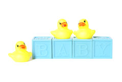 Isolated Baby Blocks. With rubber ducks Stock Photos