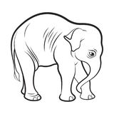 isolated baby elephant in black outline stock illustration