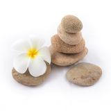 Isolated of the balance stones is zen for spa. The isolated of the balance stones with Frangipani flower is zen for spa on white background Royalty Free Stock Photos