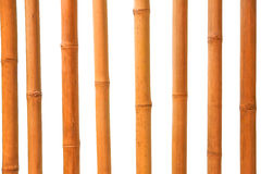 Isolated Bamboo sticks Stock Images