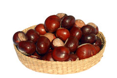 Isolated Basket of Chestnuts. An isolated basket full of chestnuts on a white background (with clipping path Stock Image