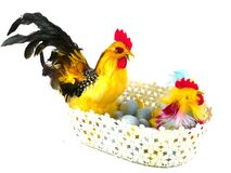 An isolated basket with Easter chickens and eggs Stock Images