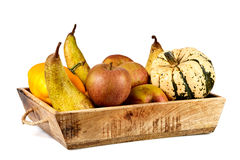Isolated basket full of autumn fruits stock photography