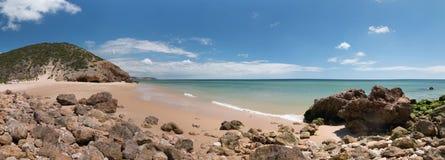 Isolated beach Stock Photo