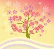Isolated beautiful cherry blossom tree. Vector spring background cherry blossom. Isolated beautiful cherry blossom tree Royalty Free Stock Photo