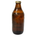 Isolated Beer Bottle Royalty Free Stock Photos