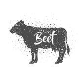 Isolated beet animal design Stock Photos