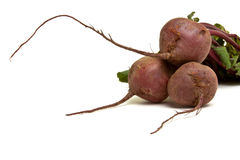 Isolated Beetroot Royalty Free Stock Photo