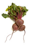 Isolated Beetroot Stock Photography