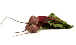 Isolated Beetroot Royalty Free Stock Photography