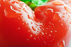 Isolated bell pepper paprika Royalty Free Stock Images